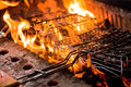 Free Barbecue Stock Photography - 24601982