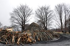 Free Charcoal Pile Royalty Free Stock Photography - 24609907
