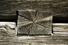 Timber Logs, Wooden Texture Royalty Free Stock Images