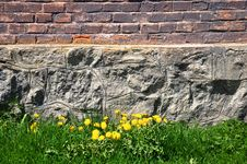 Free Brick And Stone Wall, Grass And Dandelions Stock Photos - 24613203