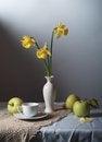 Free Daffodils Royalty Free Stock Photo - 24620175