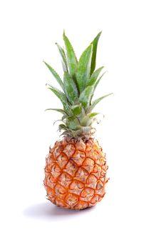 Free Ripe  Juicy Pineapple Stock Photography - 24623082