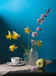 Free Daffodils Royalty Free Stock Images - 24623629