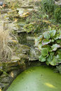 Free Pond In A Park Royalty Free Stock Photography - 24632797