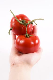 Tomatoe Hand Stock Photos