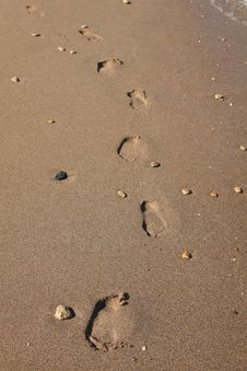 Free Footprints On Sand Royalty Free Stock Photo - 24637495