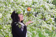 Free Woman Catching An Apple Royalty Free Stock Photography - 24639777