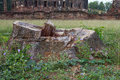 Free Stumps And Remains Of The Old Church. Stock Photos - 24649933