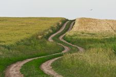 Free Abstract Rural Scenery Royalty Free Stock Photos - 24650158