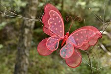 Free A Red Butterfly Royalty Free Stock Photography - 24655417