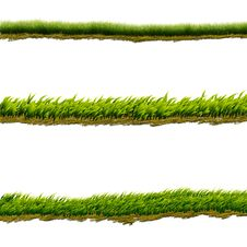 Free Green Grass Lines Royalty Free Stock Images - 24659339