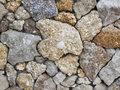 Free Wall From A Shell Rock Stock Image - 24661941