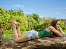 Free Beautiful Girl Lying On A Tree Stock Image - 24661361