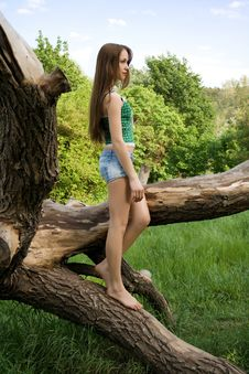 Free Girl Leaning Against A Tree Stock Image - 24661381
