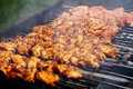 Free Fresh Meat Prepared On Fire Stock Images - 24671014