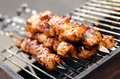 Free Fresh Meat Prepared On Fire Stock Images - 24671024