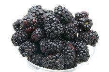 Free Berries Stock Image - 24673641