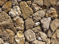 Free Wall From A Shell Rock Royalty Free Stock Photography - 24685307