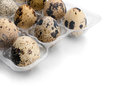 Free Quail Eggs. Stock Photo - 24689260