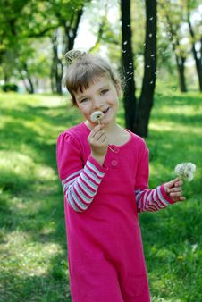 Free Little Girl With Dandelions Stock Photography - 24683002