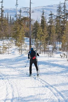 Free Skier Runs Cross-country Skiing Stock Image - 24684691