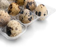 Free Quail Eggs. Stock Photo - 24689260