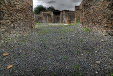 Free Pompeii Royalty Free Stock Image - 24697016