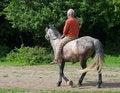 Free Senior Man On Horseback Royalty Free Stock Image - 2478366