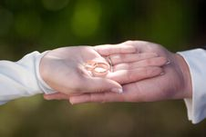 The Rings Of Bride And Groom Stock Photography