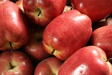 Free Ornamental Apples Royalty Free Stock Images - 2473259