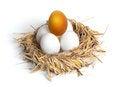 Free Golden Egg Royalty Free Stock Photos - 24717448