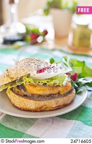 Free Vegetarian Burger With Tofu Royalty Free Stock Photo - 24716605