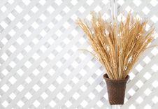 Free Wooden Lattice Background Stock Photo - 24711080