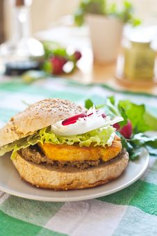 Free Vegetarian Burger With Tofu Royalty Free Stock Photo - 24716605