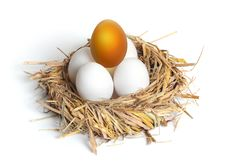 Golden Egg Royalty Free Stock Photos