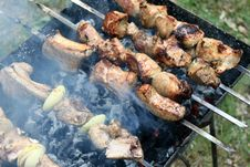 Free Tasty Grilled Meat On Skewers Royalty Free Stock Photo - 24728505