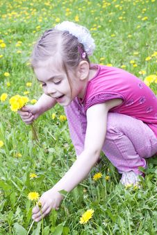 Free Young Girl In A Field Of Dandelions Royalty Free Stock Images - 24729279