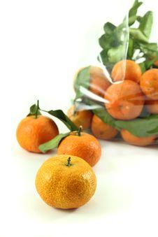 Free Orange Royalty Free Stock Photos - 24734408