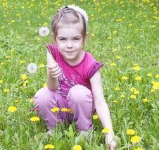 Free Young Girl In A Field Of Dandelions Royalty Free Stock Image - 24735066