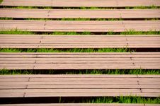 Free Boardwalk And Grass Royalty Free Stock Photo - 24737795
