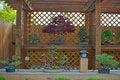 Free Bonsai Garden Royalty Free Stock Photos - 24745208