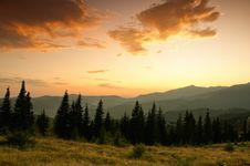 Free Beautiful Summer Landscape In The Mountains. Sunri Royalty Free Stock Photography - 24740547