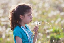 Free Pretty Young Girl Blows At Dandelion Blossom Stock Images - 24741074