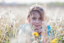 Free Beautiful Girl In A Dandelion Meadow Stock Photography - 24741262