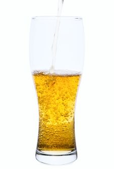 Free Pouring Beer In Glass Stock Photo - 24743770