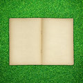 Free Old Book Open On Green Grass Royalty Free Stock Photo - 24756915