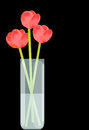 Free Flowers In Vase Royalty Free Stock Images - 24761469