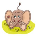 Free Baby Elephant Royalty Free Stock Photo - 24766085