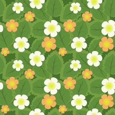 Free Seamless  Pattern Stock Photo - 24761490