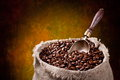 Free Sack Of Coffee Beans And Scoop. Stock Image - 24779041